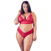 Lace Bra Set With Open Crotch-Cottelli Collection